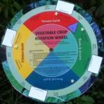 Vegetable Crop Rotation Wheel
