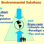 Grassroots solutions to global warming