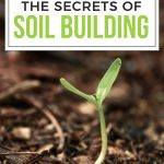 Earth Day - free Soil ebook!