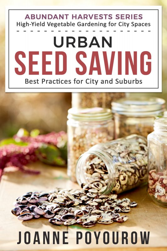 Urban Seed Saving